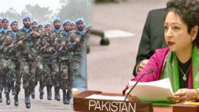 پاکستان نے 46 امن مشنز میں 2 لاکھ سے زائد جوان بھیجے