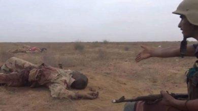 یمنی فورسز کا سعودی عرب کی جارح فوج کا بہت بڑا جانی نقصان