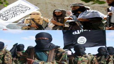 افغانستان صوبہ کنڑ میں طالبان اور داعش کے درمیان شدید لڑائی