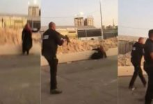 فلسطینی خاتون کو اسرائیلی فوجیوں نے گولیوں سے بھون ڈالا