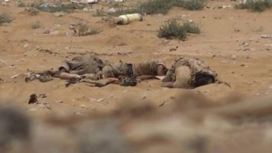 یمنی فوج نے سعودی اتحادی کے 7 فوجیوں کو ہلاک کردیا