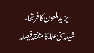یزید ملعون کافر تھا، شیعہ سنی علما کا متفقہ فیصلہ