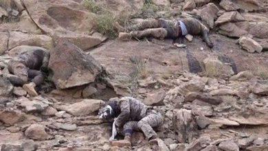 یمنی فوج کی کارروائی میں سات سعودی فوجی ہلاک