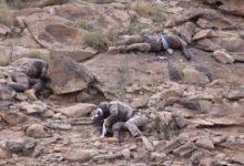 سعودی عرب کا یمنی فوج کے ہاتھوں تین فوجیوں کی ہلاکت کا اعتراف