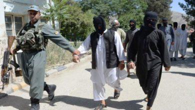 افغان حکومت کے ہاتھوں داعش کے 700 دہشت گرد اہل خانہ سمیت گرفتار