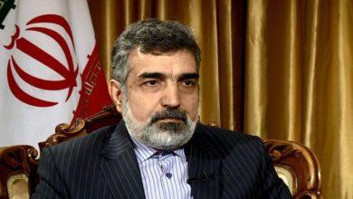 اکبر صالحی کے خلاف پابندیاں لگانا امریکی کمزوری کی علامت ہے۔