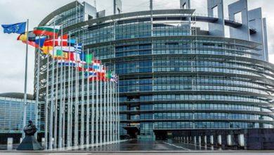 یورپی ممالک ریاض اجلاس کا بائیکاٹ کریں۔ میری ارینا