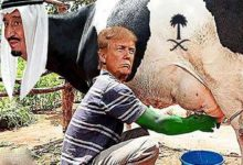 امریکہ نے دودھ دینے والی گائے (سعودی عرب) سے 500 ملین ڈالر نکال لیئے
