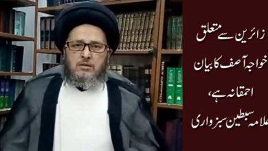 زائرین سے متعلق خواجہ آصف کا بیان احمقانہ ہے، سبطین سبزواری