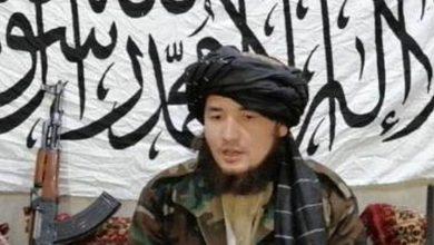 افغان طالبان اور شیعہ ہزارہ امریکہ اور داعش کے خلاف متحد ہوگئے