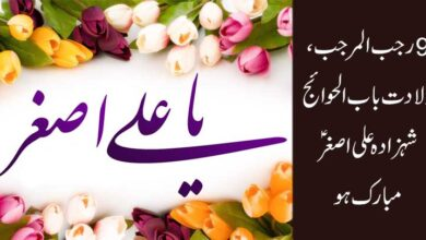 9 رجب المرجب ولادت باب الحوائج شہزادہ علی اصغر ؑ مبارک ہو