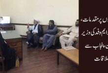 عزاداروں پر مقدمات، ایم ڈبلیو ایم وفد کی وزیر قانون پنجاب سے ملاقات