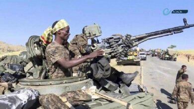 نائجیریا میں تکفیری دہشتگرد بوکوحرام کے خلاف زمینی اور فضائی آپریشن