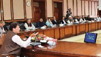 وفاقی کابینہ نے بھی تحریک لبیک پر پابندی کی منظوری دے دی
