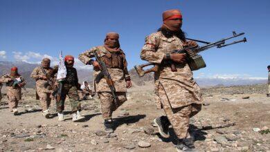 گزشتہ سال طالبان نے 28 افغان علمائے کرام کو شہید کیا