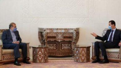 ایران کا دہشت گردی کے خلاف جنگ میں شام کی حمایت جاری رکھنے کا عزم