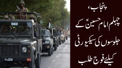 پنجاب، چہلم امام حسینؑ کے جلوسوں کی سیکیورٹی کیلئے فوج طلب کرنے کا فیصلہ