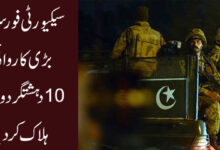 سیکیورٹی فورسز کی بڑی کاروائی، 10 دہشتگردوں کو ہلاک کردیا