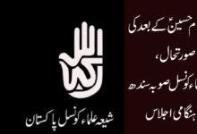 چہلم امام حسینؑ کے بعدکی صورتحال، شیعہ علماء کونسل صوبہ سندھ کا ہنگامی اجلاس